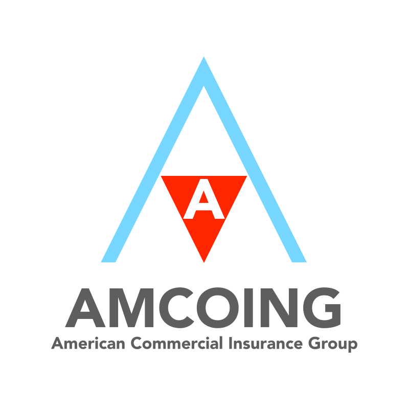 American Commercial Insurance Group