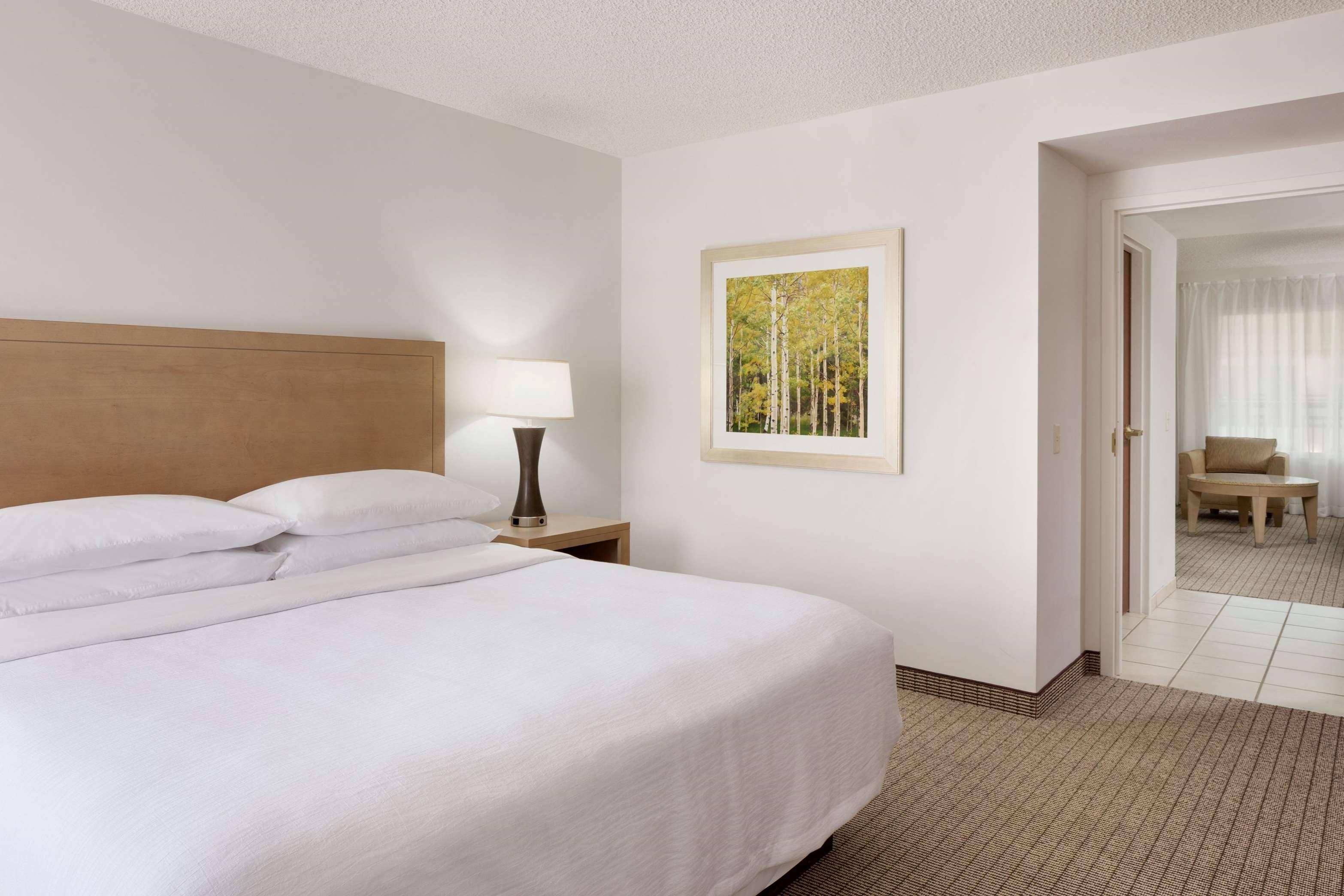 Embassy Suites by Hilton Denver International Airport image 27