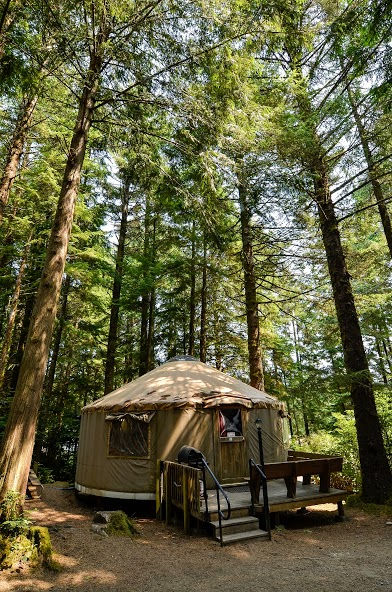 South Jetty RV & Camping Resort image 4