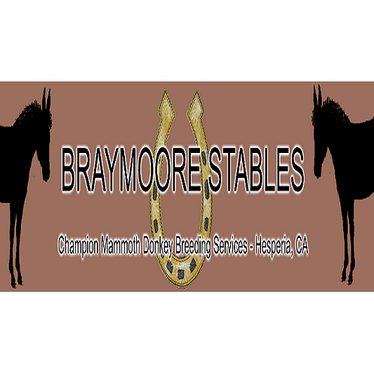 Braymore Stables