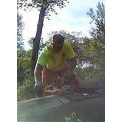 Alford Tree Service, LLC image 3