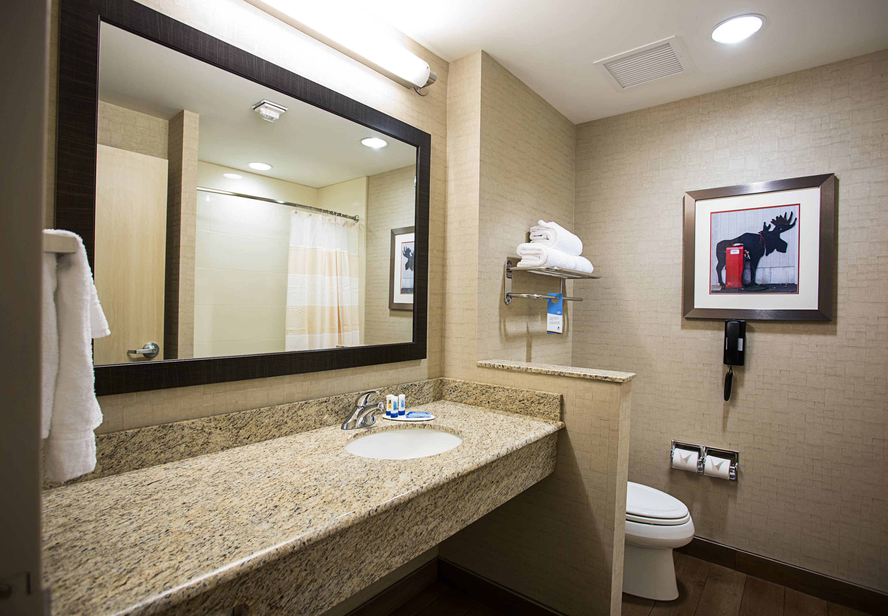 Fairfield Inn & Suites by Marriott Moscow image 10