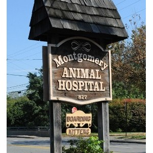 Montgomery Animal Hospital - Flourtown, PA 19031 - (215) 233-3958 | ShowMeLocal.com