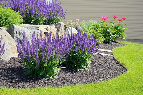 Ritzel Lawn Care, Inc. image 2