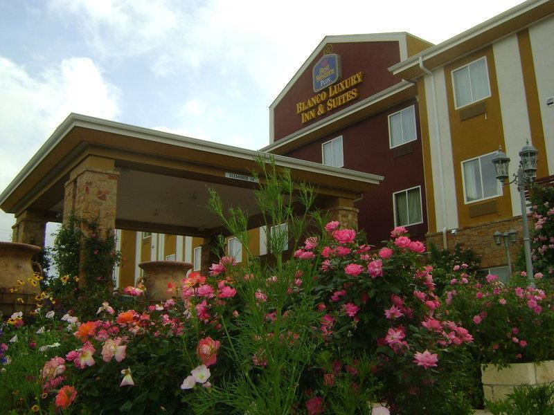 Best Western Plus Blanco Luxury Inn & Suites image 17