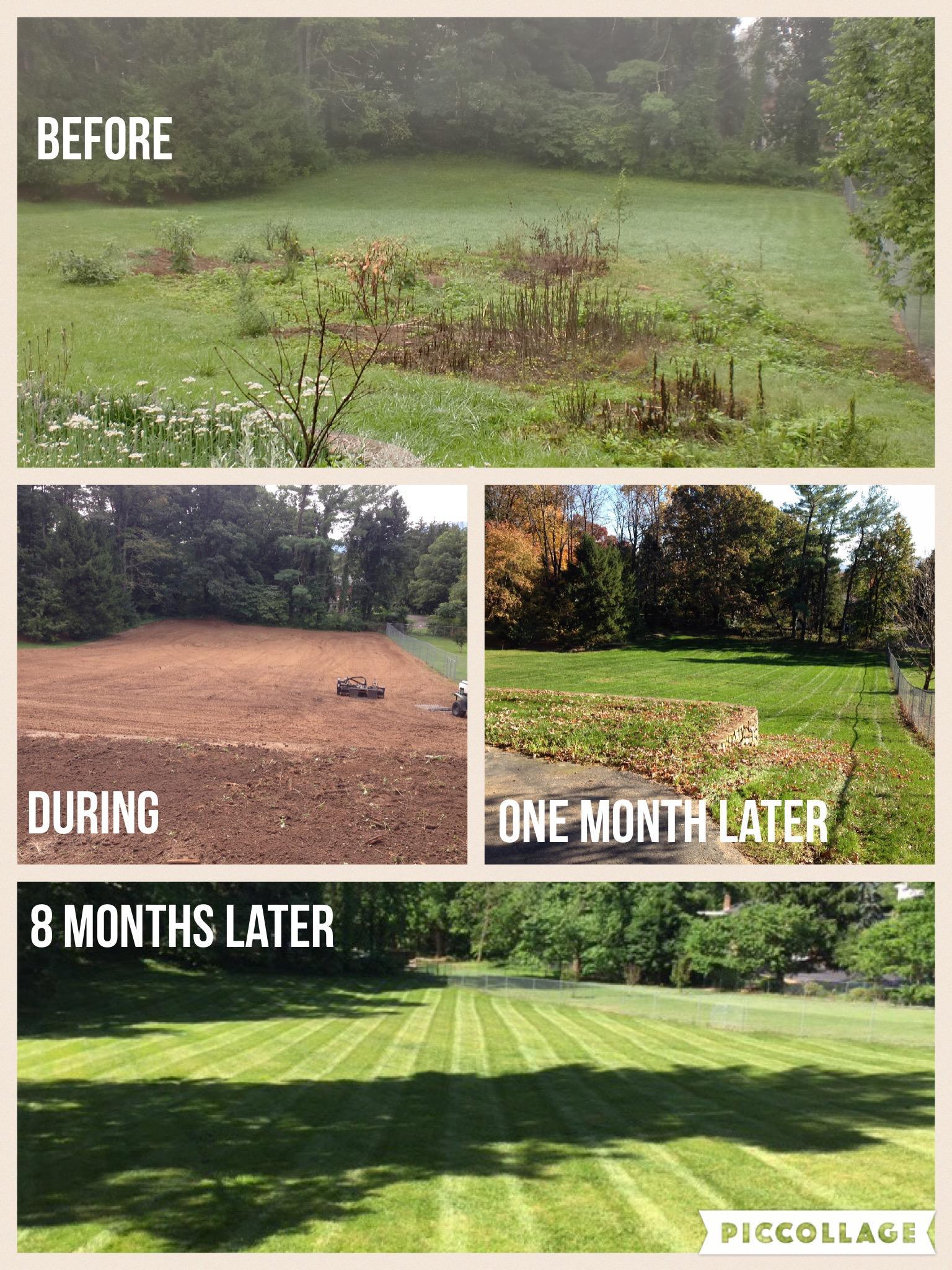 Paradise Landscaping & Design LLC image 7