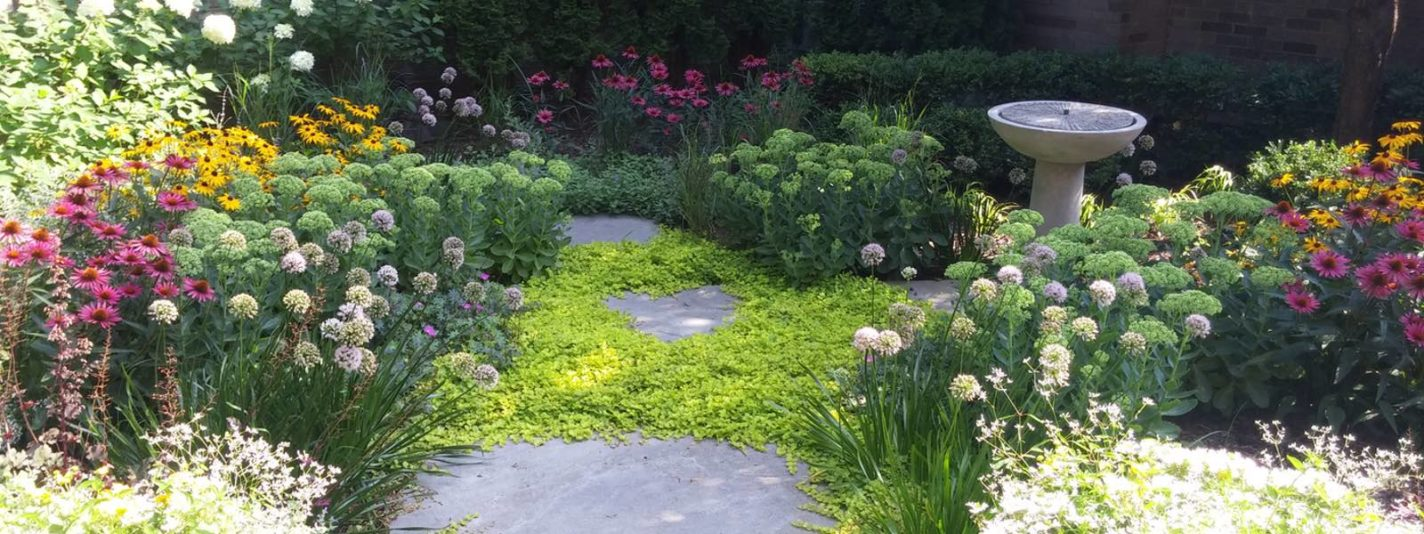 Greenwise Organic Lawn Care and Landscape Design image 0