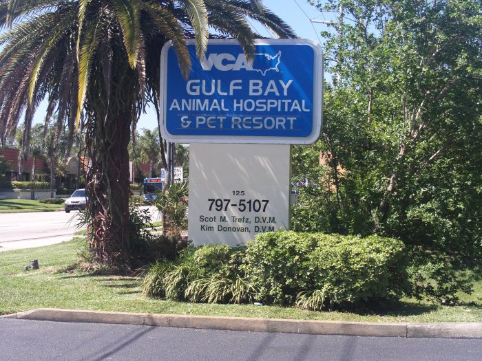 VCA Gulf Bay Animal Hospital image 0