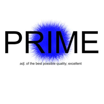 Prime Painting LLC