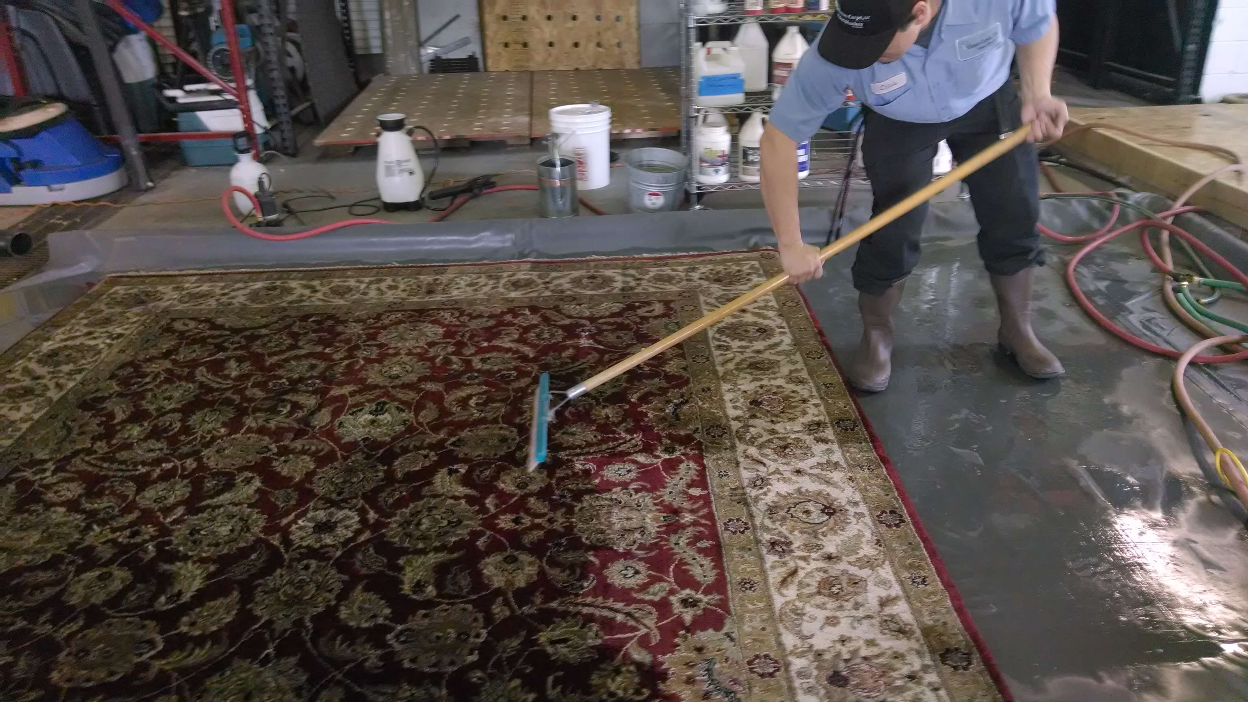 Chase Carpet Care