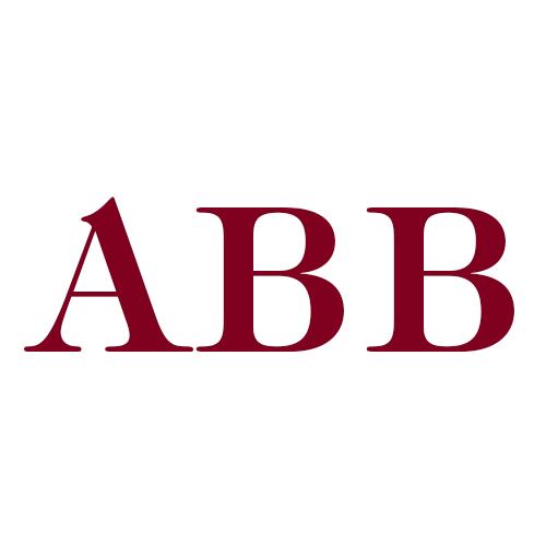 Aperion Bail Bonds LLC