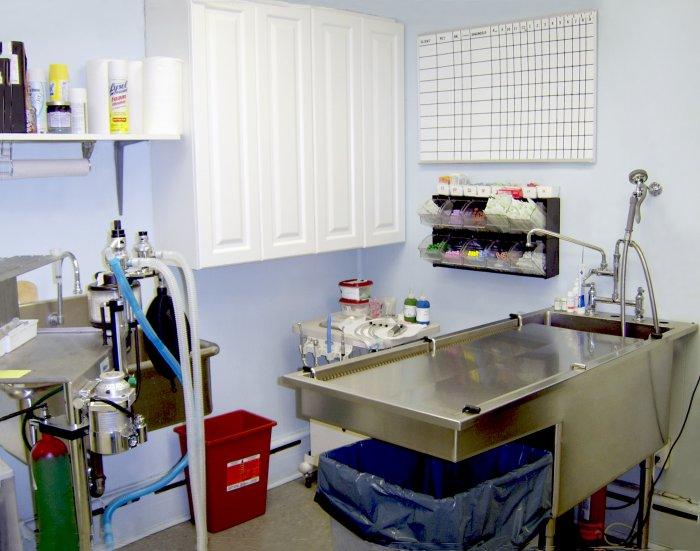 Blue Point-Bayport Animal Hospital image 3