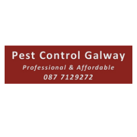 Pest Control Galway