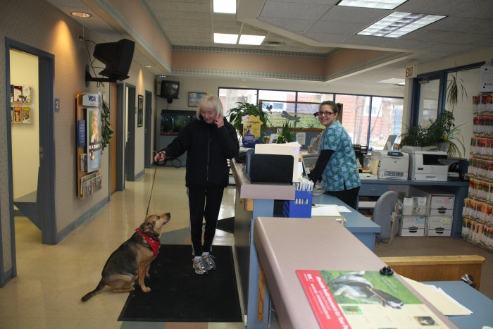 VCA Worth Animal Hospital in Palos Hills, IL, photo #5