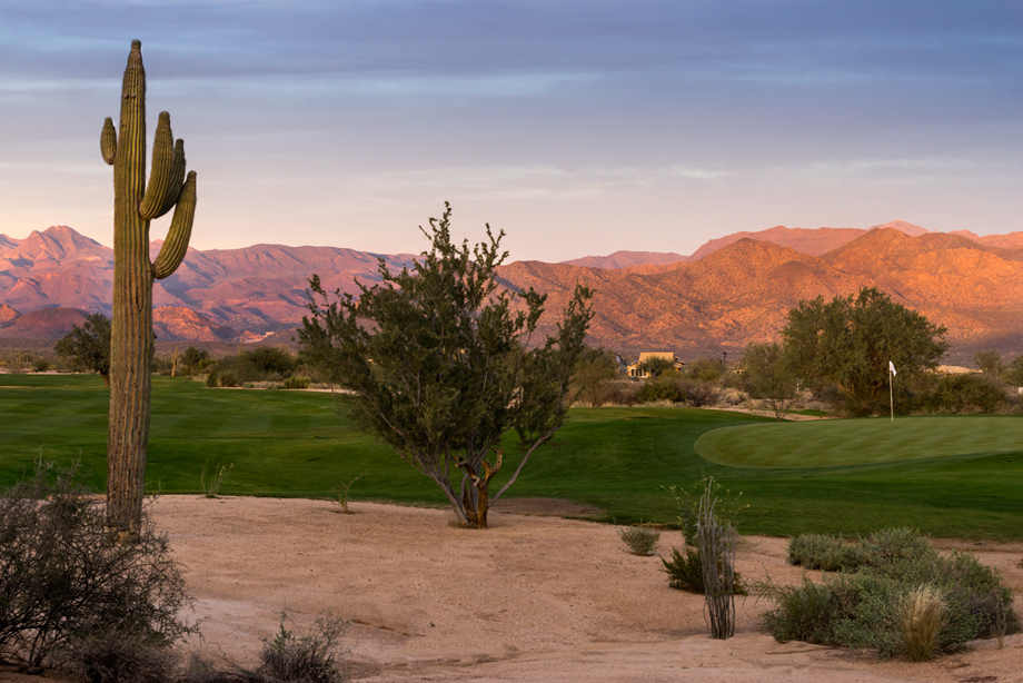 Toll Brothers at Verde River image 9