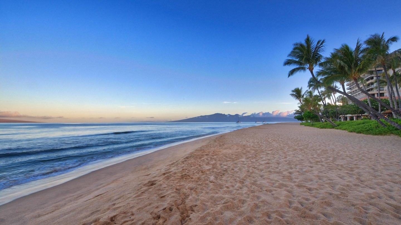 Marriott's Maui Ocean Club  - Lahaina & Napili Towers image 25