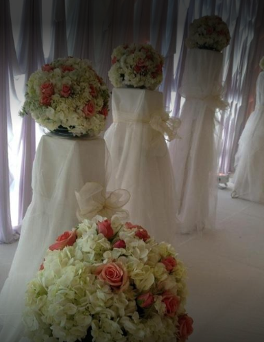 Petra Flowers image 5