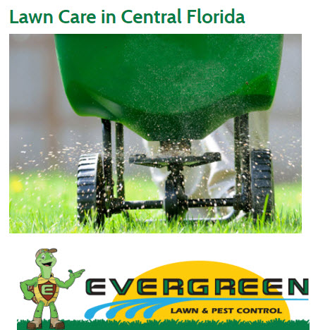 Evergreen Lawn & Pest Control image 2