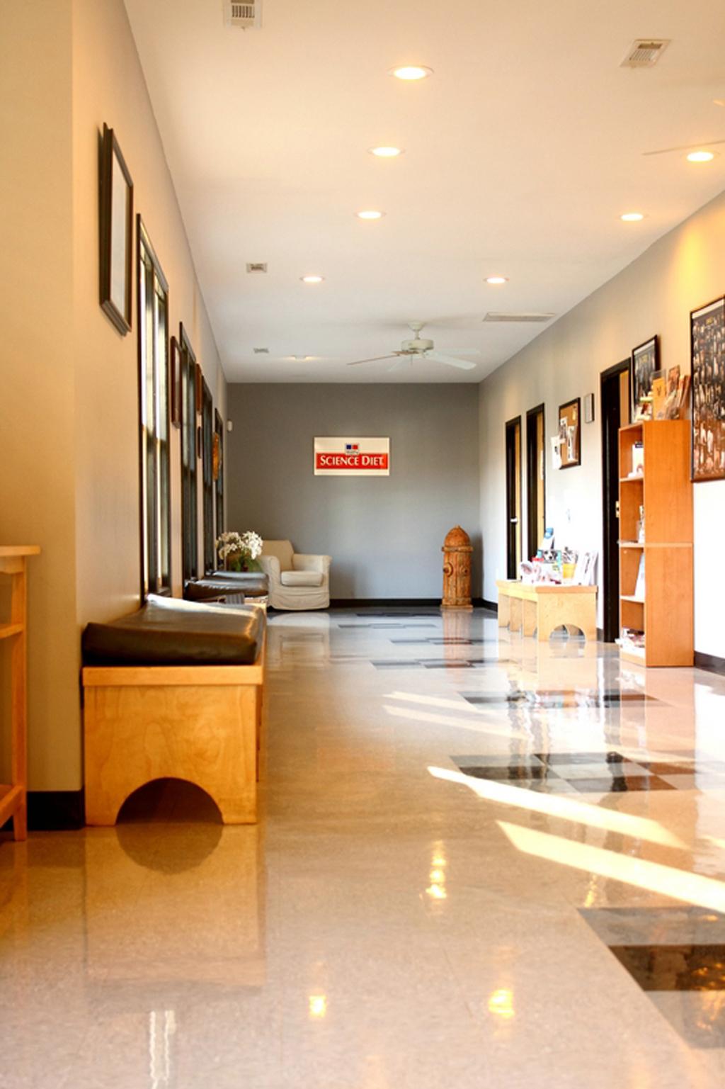 VCA Chestatee Animal Hospital image 2