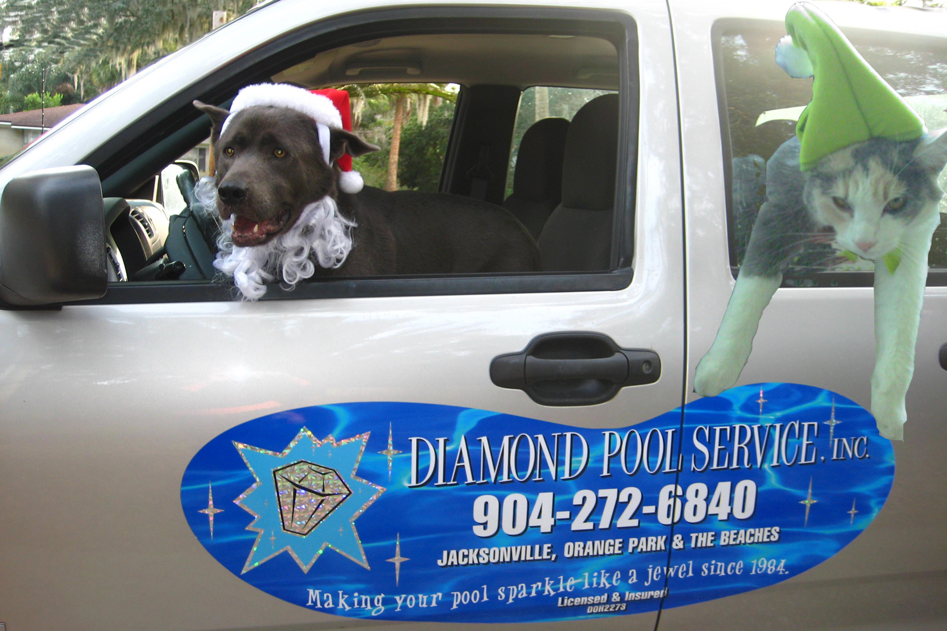 Diamond Pool Service, Inc.