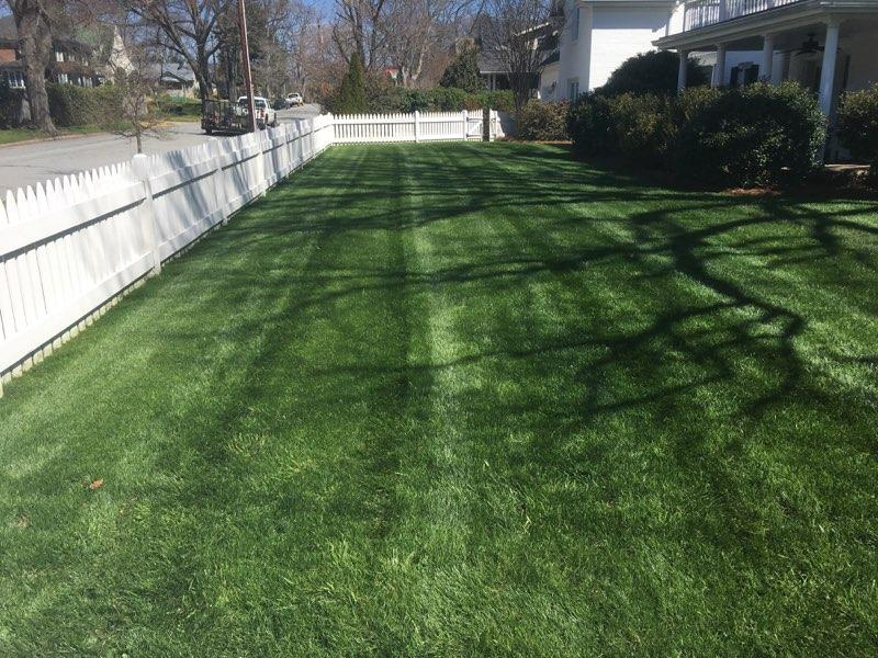 Nature's Select Premium Turf Services, Inc. image 1