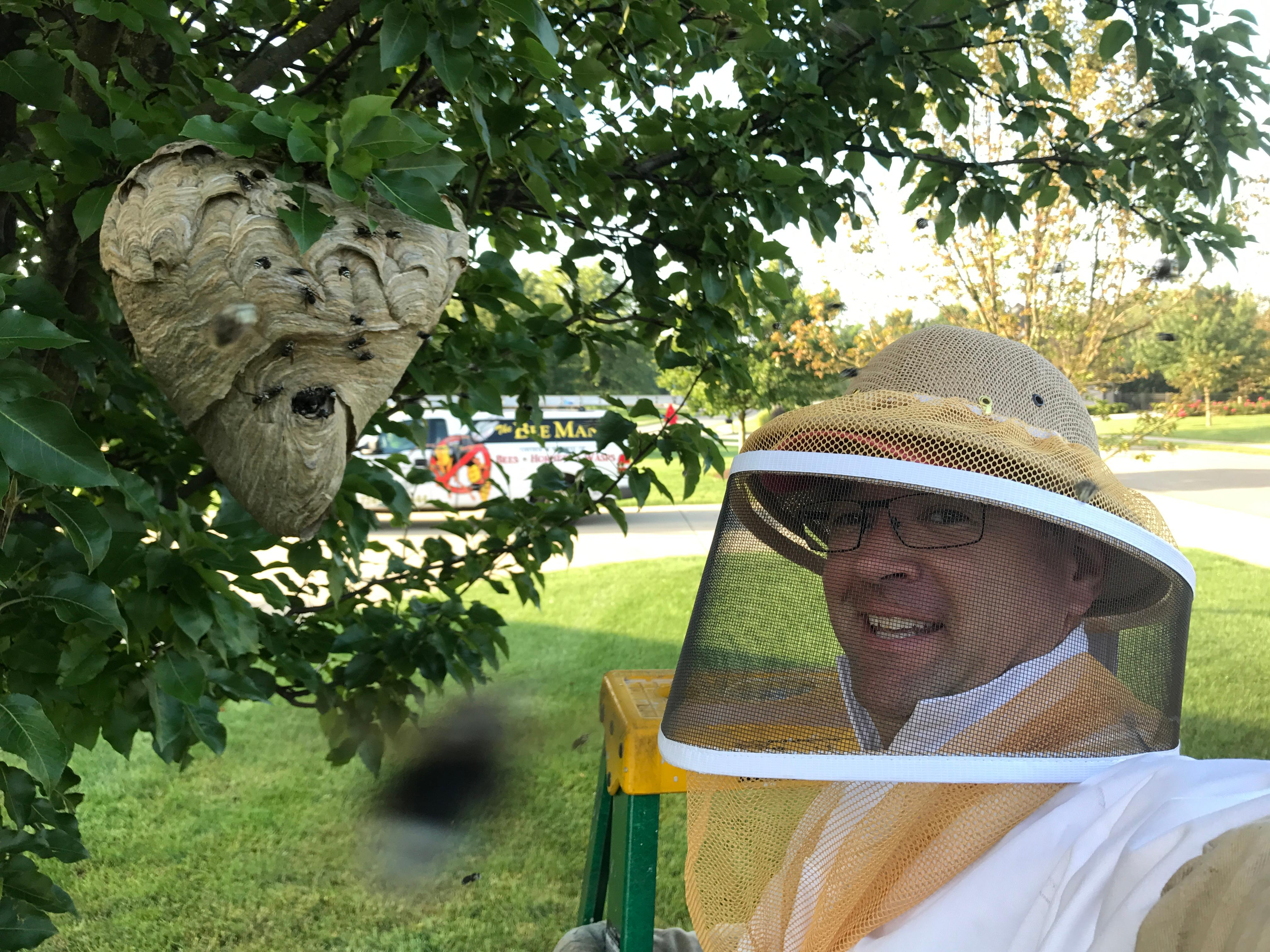 The Bee Man image 7
