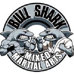 Bull Shark Mixed Martial Arts