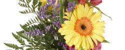 Clark's Flower Shop & Garden Center image 0
