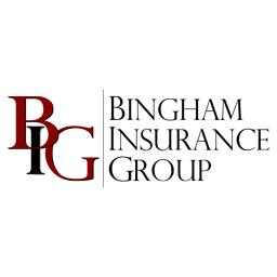 Bingham Insurance Group image 0