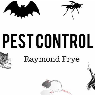 Rays Property Maintenance and Pest Control image 3