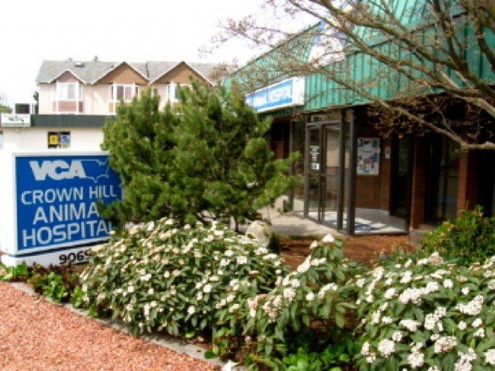 VCA Crown Hill Animal Hospital image 7