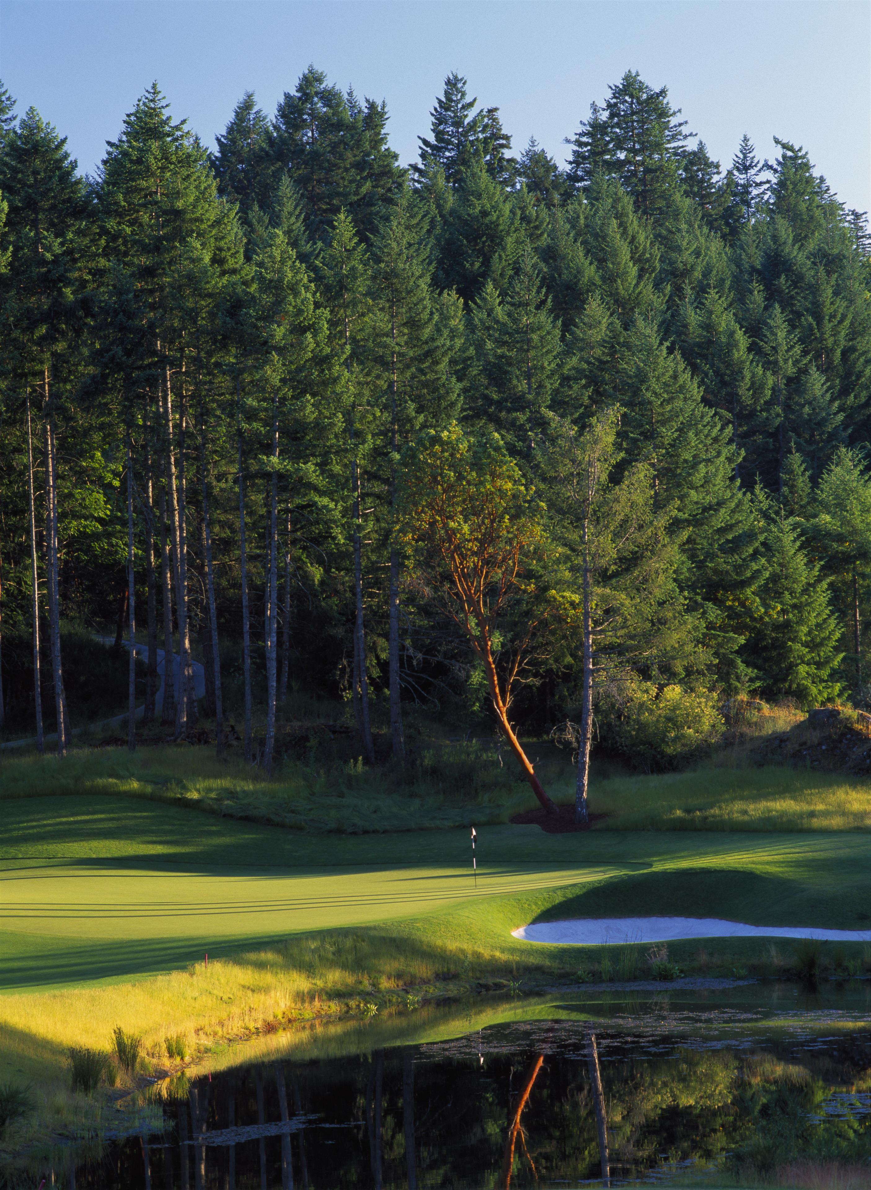 The Westin Bear Mountain Golf Resort & Spa, Victoria in Victoria: Mountain Hole #12