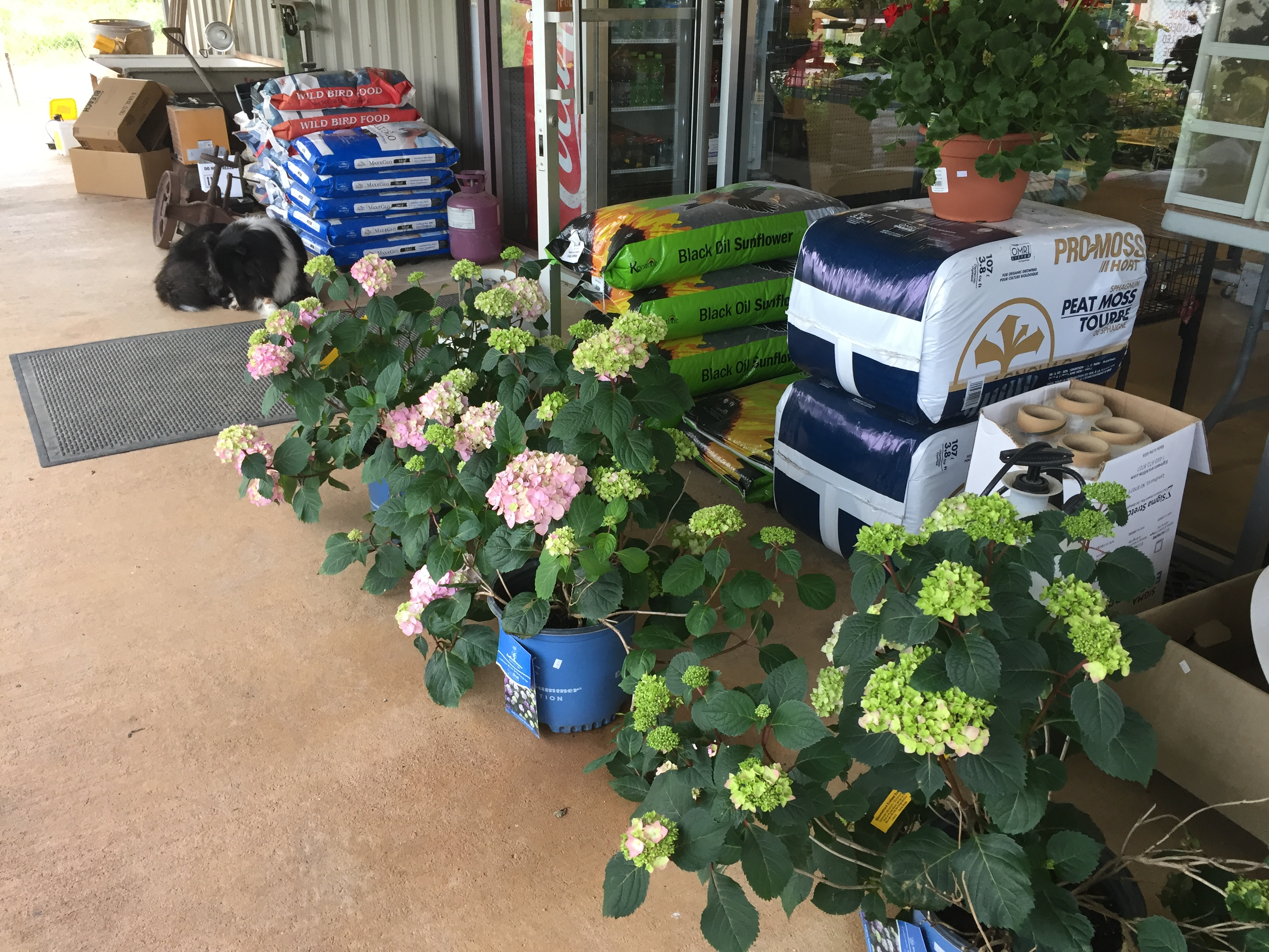 Van's Hardware & Farm Supply image 1