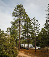 Idyllwild RV Resort image 3