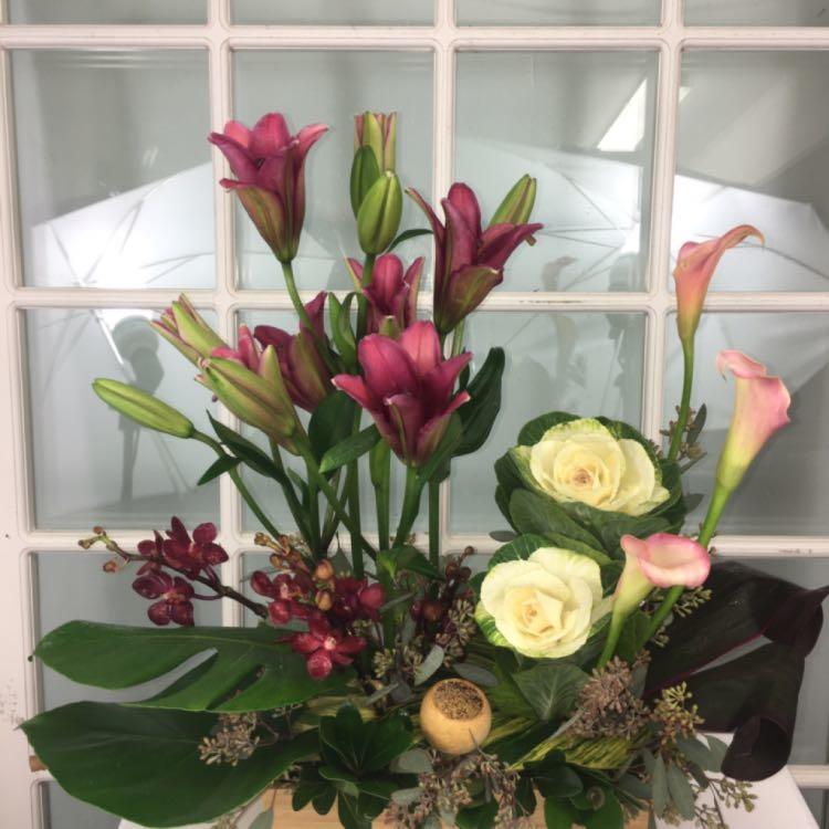 Floral Elegance image 35