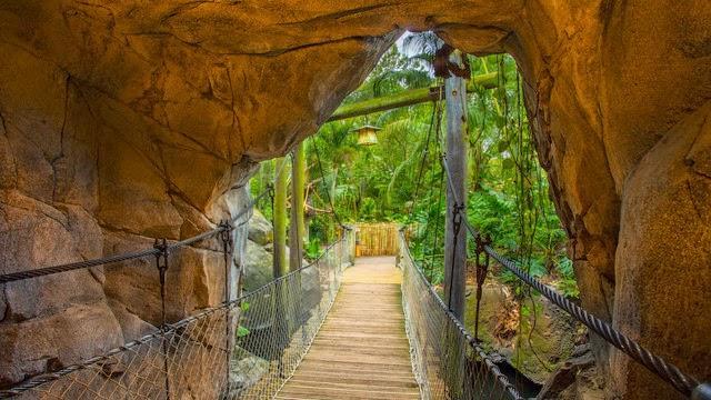 Walt Disney World® Resort image 62