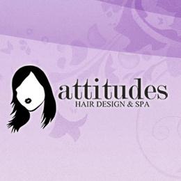 Attitudes hair design spa rochester ny company for A new attitude salon