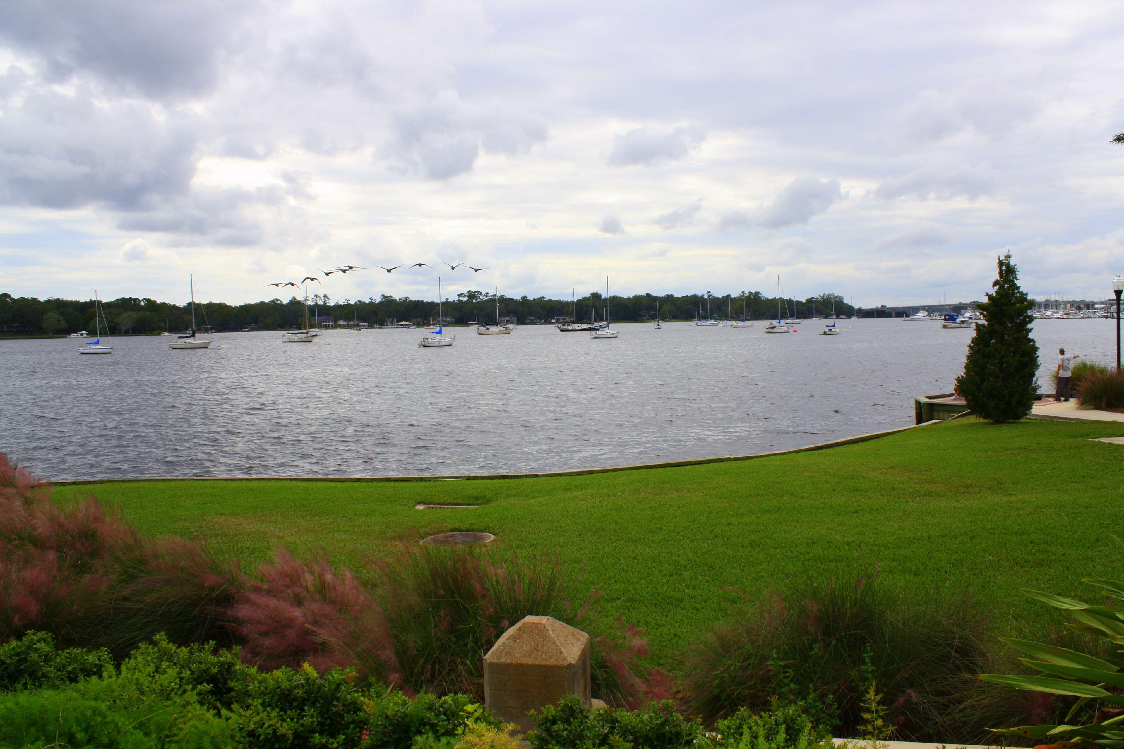 Hampton Inn Jacksonville-Downtown-I-95 image 2