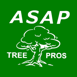 ASAP Tree Pros Inc