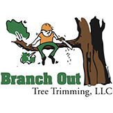 Branch Out Tree Trimming