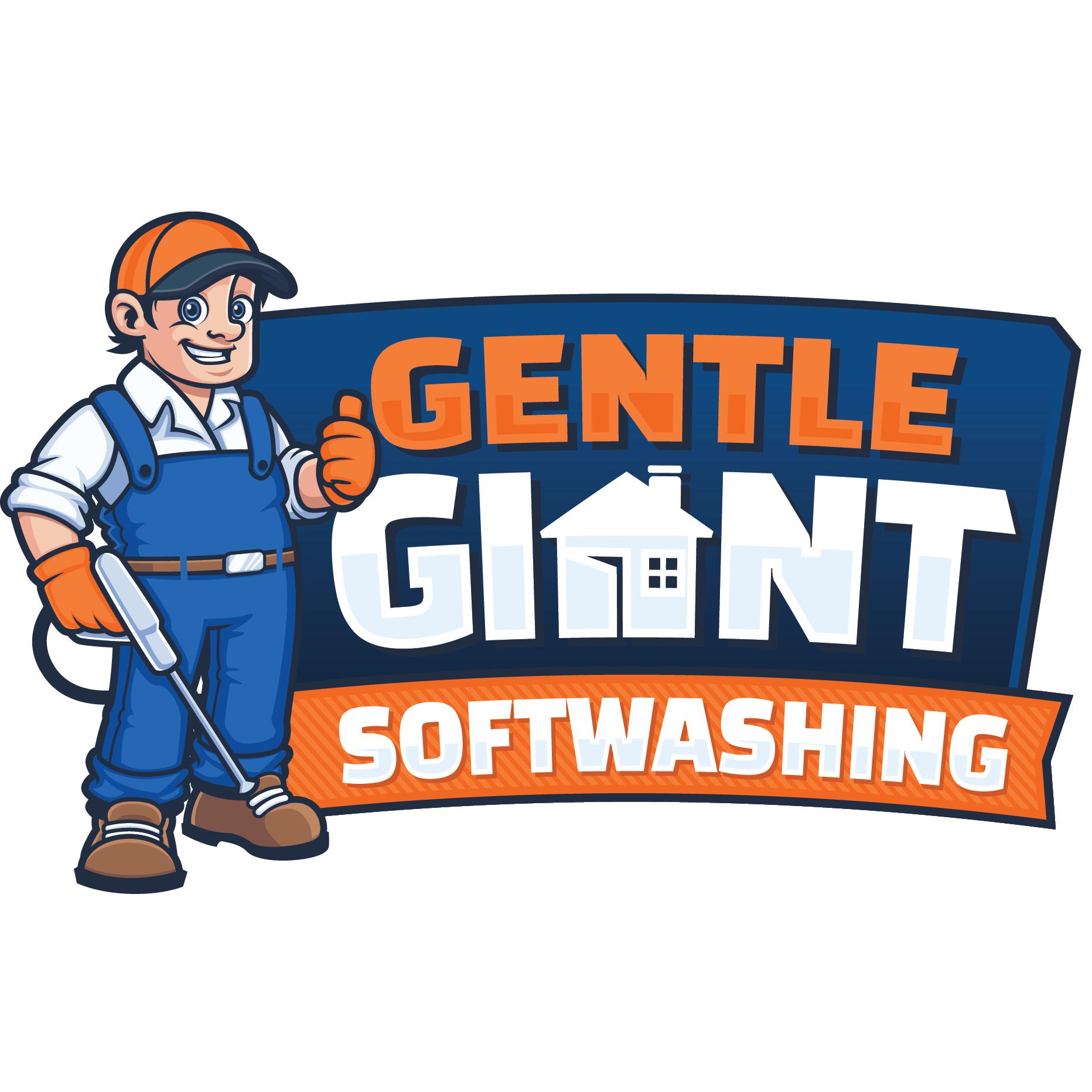Gentle Giant Softwashing