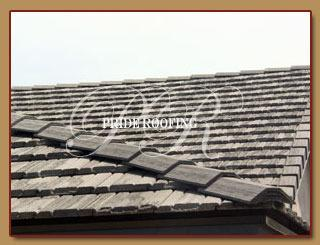 Laguna Niguel Roofing with Blue Knight image 7