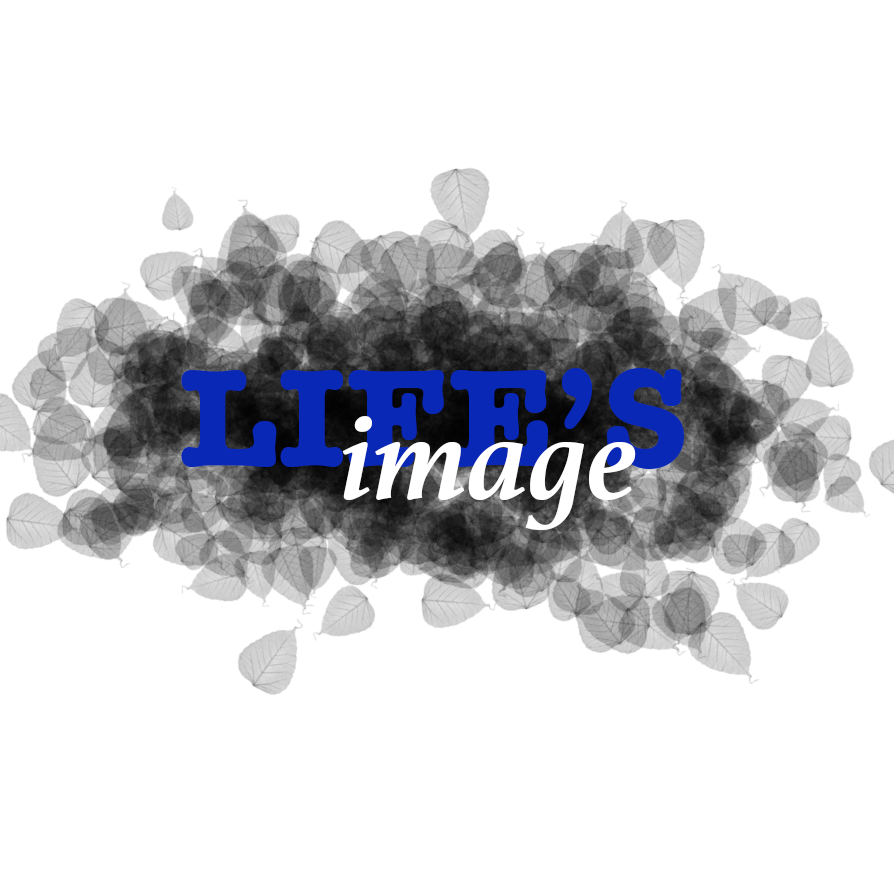 Life's Image, Ltd. - Aurora, CO 80016 - (303)537-7758   ShowMeLocal.com