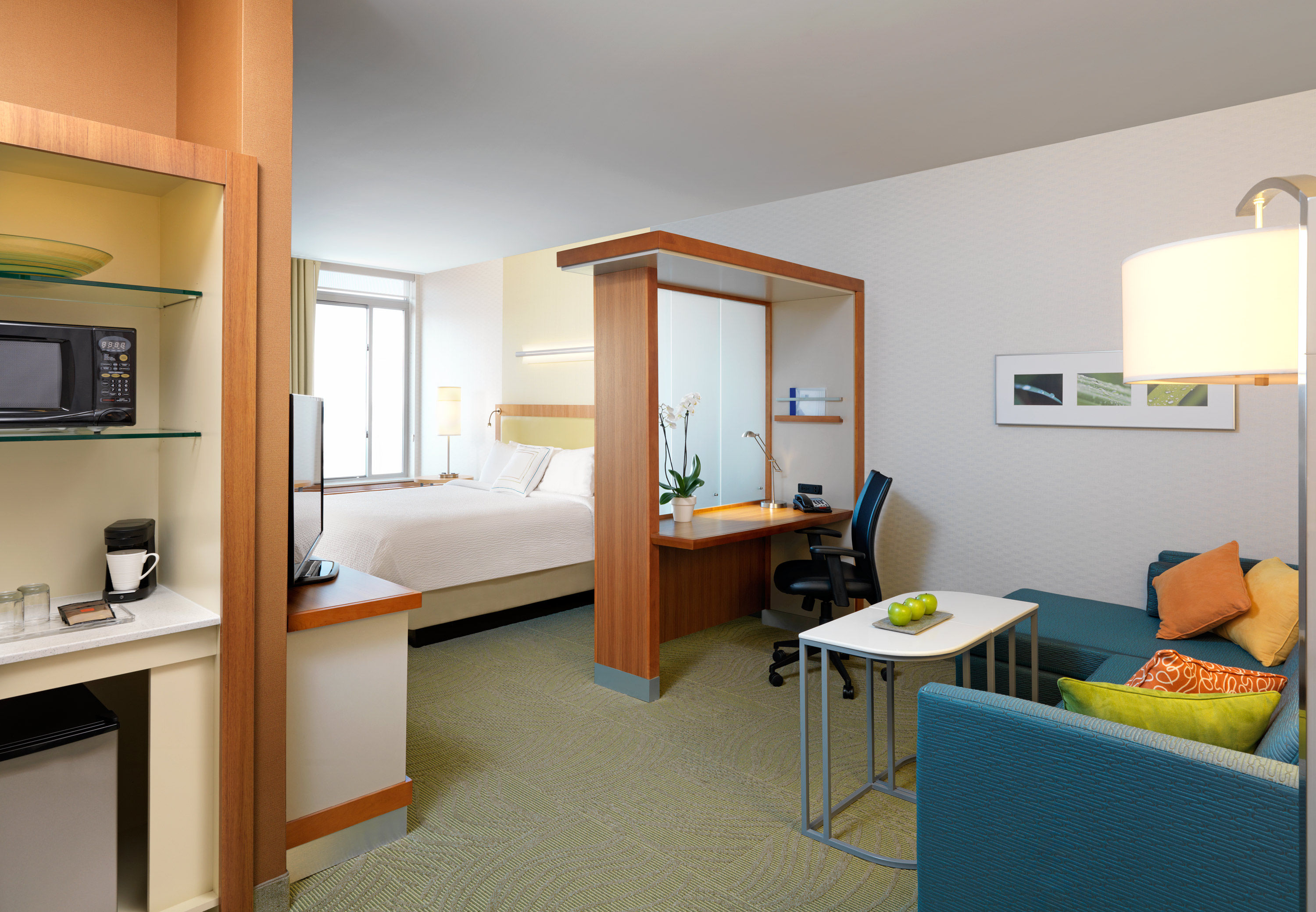 SpringHill Suites by Marriott Buffalo Airport image 11