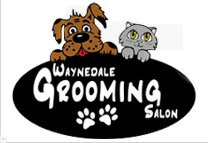 Waynedale grooming salon pet grooming coupons near me in for Dog grooming salons near me