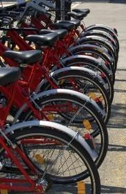 Sarasota Cyclery image 2