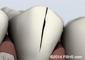 Horsley & Andrus Endodontics image 4