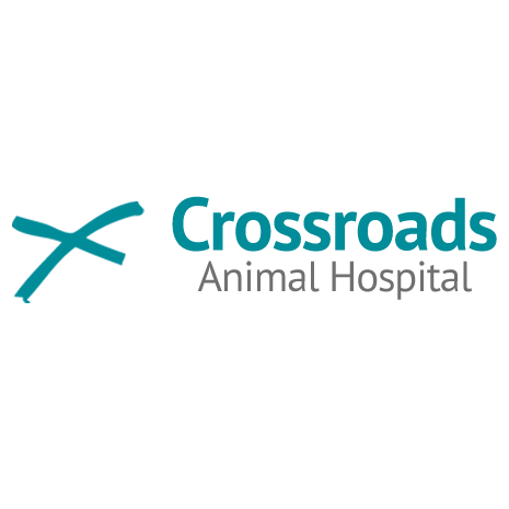 Crossroads Animal Hospital image 4
