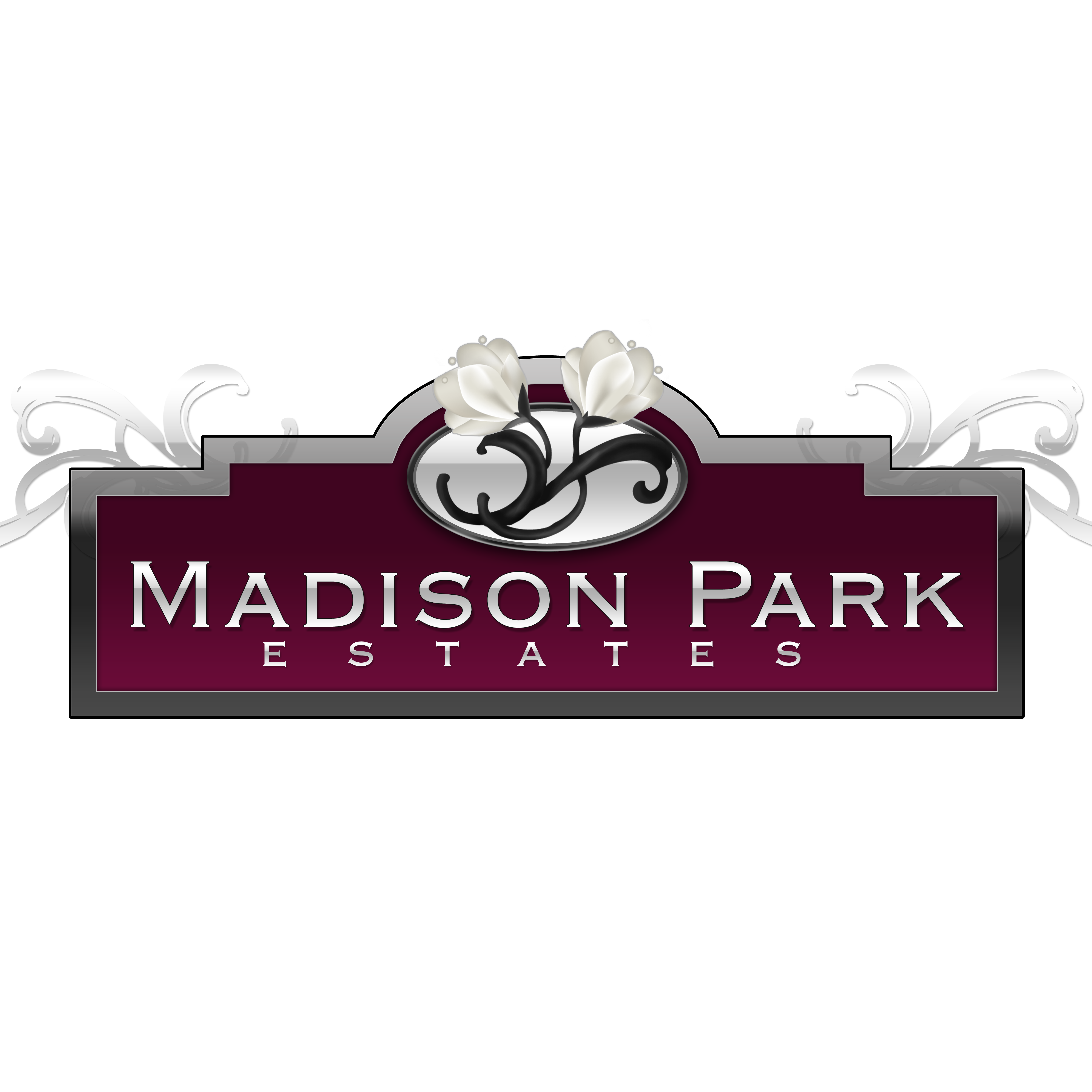 Madison Park by Viking Homes image 4
