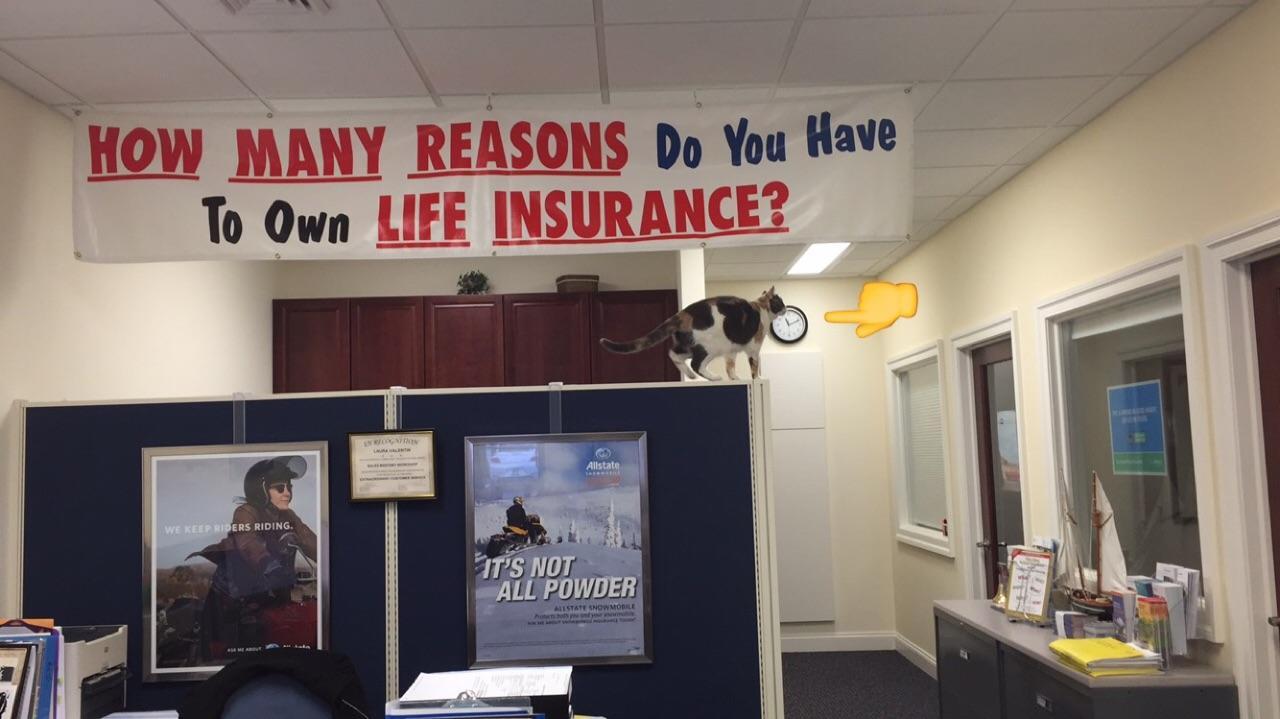 Allstate Insurance Agent: Kevin Keller image 16